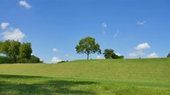 The tree with the wind against a background of sky and clouds 4K Stock Footage