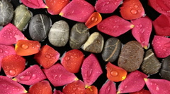 Beautiful relaxing panorama rose petals with dew drops and stones, spa concept Stock Footage