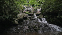 Lush Mountain Waterfall Stock Footage