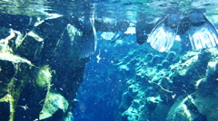 Snorkeling in the Silfra fissure, Iceland Arkistovideo