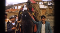 1962: three men gathered around a camel foaming at the mouth IZMIR TURKEY Stock Footage
