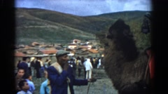 1962: outdoor market area people observing a llama like animal IZMIR TURKEY Stock Footage