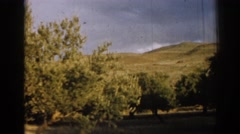 1962: a serene landscape with trees and rolling hills IZMIR TURKEY Stock Footage