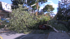 Power lines and trees down and car crushed after wind storm in Toronto Stock Footage