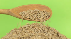 Wooden spoon pours grains rye at heap of rye on a green screen Stock Footage