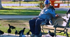 Senior man on a bench feeding the birds in the park in Los Angeles 4K RAW Stock Footage