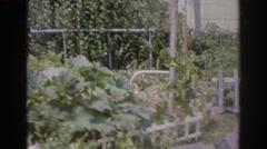1966: a backyard garden NORFOLK VIRGINIA Stock Footage