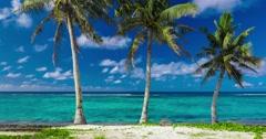Tropical beach on Samoa Island with palm trees Stock Footage
