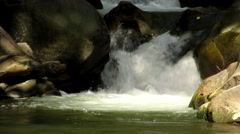 Small fish jumping in the water in the waterfall Stock Footage