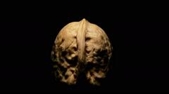 Walnut nut turning on black background Stock Footage
