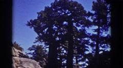 1939: tall pine trees LAKE TAHOE CALIFORNIA Stock Footage