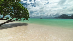 Tree over the water on the Las Cabanas beach in El Nido. Palawan island Stock Footage