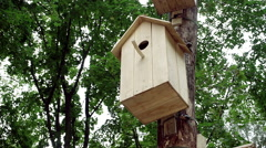 House for bird in a park. One wooden handmade nest hanging on a pole. HD Stock Footage
