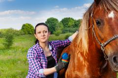 Portrait of young woman brushing beautiful horse Stock Photos