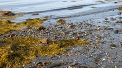 Rippling waves washing ashore Stock Footage