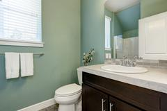 Mint green half bathroom interior with vanity cabinet and a toilet. Northwest Stock Photos