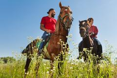 Portrait of two male equestrians on bay horses Stock Photos