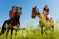 Young couple riding purebred horses at countryside Stock Photos