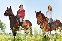 Happy couple horseback riding in flowery meadows Stock Photos