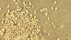 Falling grains of pearl barley on a rotating cloth burlap Stock Footage
