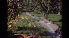 1937: sunny day in the countryside, a path made through nature SACRAMENTO Stock Footage