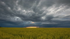 Stormy clouds over a canola field Stock Footage