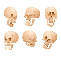Skull face illustration isolated on white background Piirros