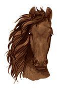 Arabian brown stallion vector portrait Stock Illustration