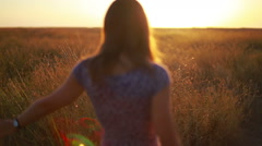 Delicate female hands stroking summer faded grass at sunset Stock Footage