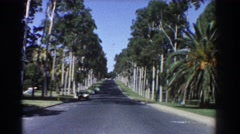 1967: a lonely street with trees accompanying the sides. PERTH AUSTRALIA Stock Footage