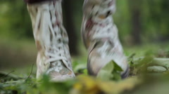 Dancing on the leaves Stock Footage