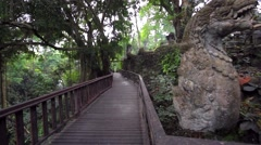 Monkey Forest trails. Jungles. Stone ancient statues.Monkey forest Stock Footage