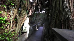 Famous dragon bridge in Monkey Forest. Ancient temple and stone statues Stock Footage