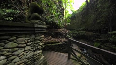 Monkey Forest trails. Jungles and river. Stone ancient statue. Monkey forest Stock Footage
