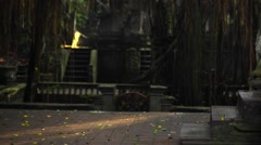 Famous dragon bridge in Sacred Monkey Forest near Ubud. Temple and stone statues Stock Footage