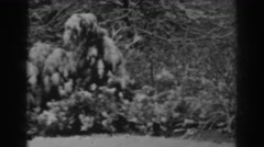1938: a beautiful forest covered with a blanket of white snow  Stock Footage
