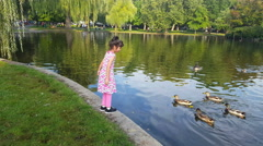 Girl feeding ducks in the park. Girl play outdoors. Kid playing with pets Stock Footage