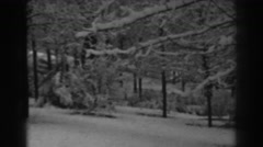 1938: snow covers trees and the ground in a wooded area Stock Footage