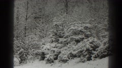 1938: forest of coniferous and deciduous trees covered in snow MARTINSBURG WEST Stock Footage