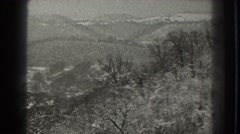 1938: viewing of trees and shrubbery out in nature. MARTINSBURG WEST VIRGINIA Stock Footage