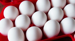 Raw eggs in a red plastic tray or box Stock Footage