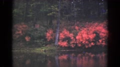 1941: sighting of the beautiful flowers by the lake. FLORIDA Stock Footage