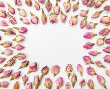 Frame from dried pink rose flower buds close up Stock Photos
