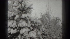 1938: snow rests on evergreens after storm MARTINSBURG WEST VIRGINIA Stock Footage
