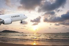 Cargo airplane taking off at sunset Kuvituskuvat