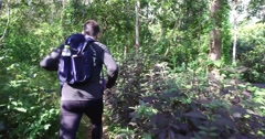 4k - pov of caucasion male hiking in woods Stock Footage