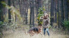 Young pretty attractive woman with red hair playing with her pet - german Stock Footage