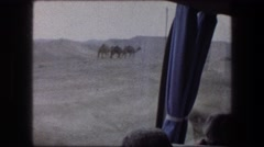 1976: camels in the desert MASADA ISRAEL Stock Footage