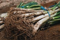 Raw calcots, sweet onions, typical of Catalonia, Spain Stock Photos