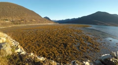 Long beautiful sea shore with calm waves splashing on land with blue sunny sky Stock Footage